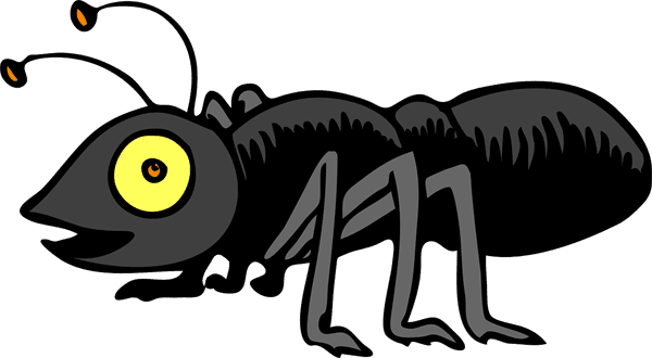 brunswick pest control stops carpenter ants from infesting your home in wilmington north carolina