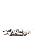 brunswick pest control offers pest control services to wilmington nc and surrounding areas