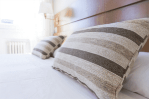all you need to know about bedbugs by brunswick pest control