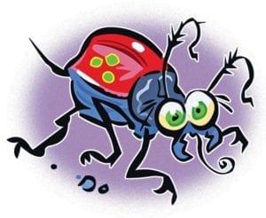 brunswick pest control provides information about seasonal pests